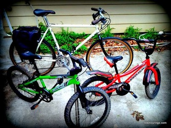 Picture of adult bike for commuting and kid's bikes