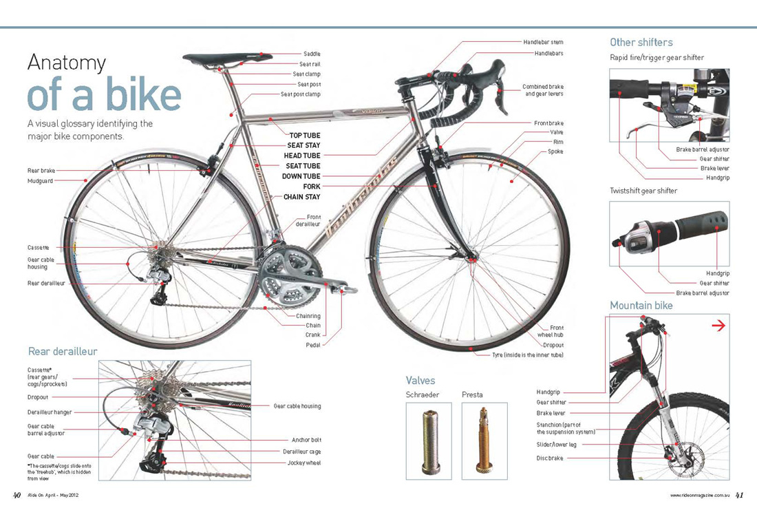 Picture anatomy of a bike