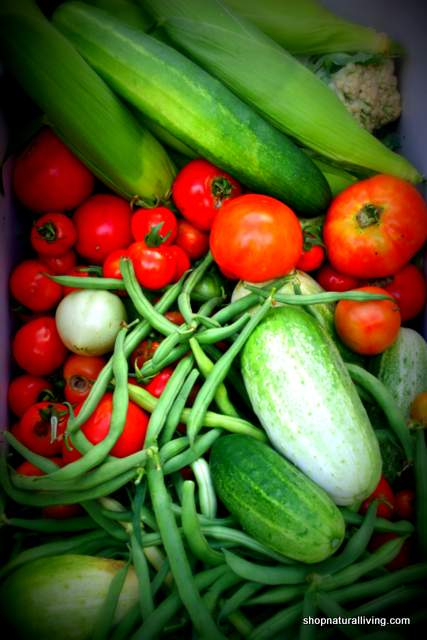 Picture of organic produce from Natural Living co op garden