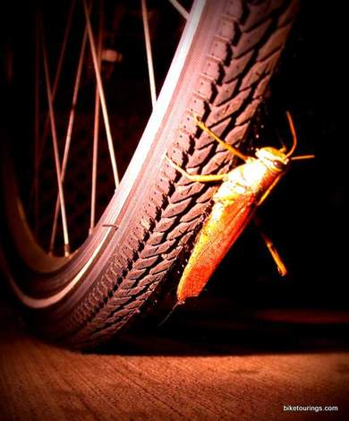 Picture of tread on tire for bike touring or touring bike with grasshopper