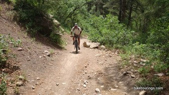 Picture of mountain bike for touring on gravel road