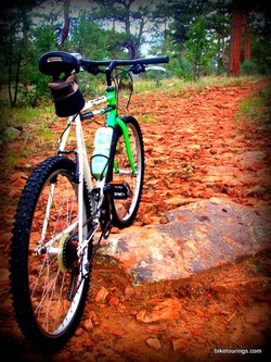 Picture of mountain bike trail
