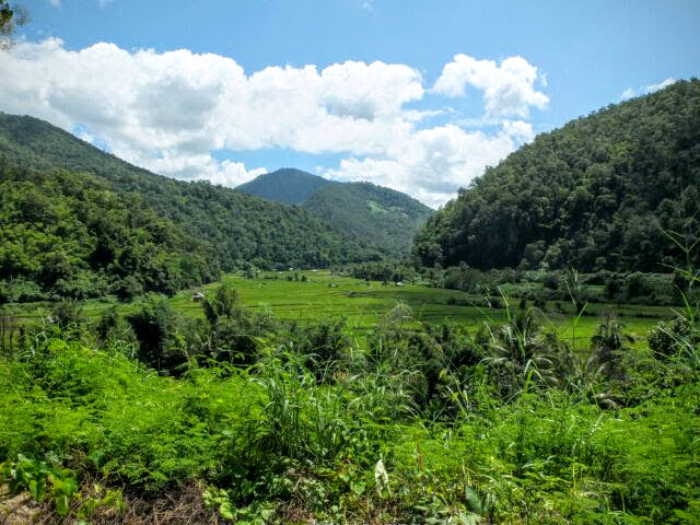 Picture of Thailand's bike touring scenery